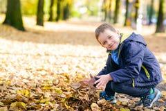 使用与叶子的愉快的微笑的小男孩 免版税库存照片