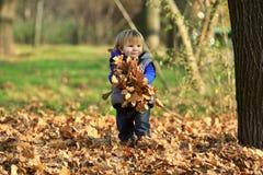 使用与叶子的男孩在公园 图库摄影