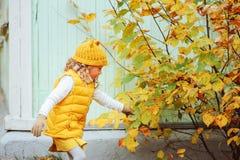 使用与叶子的逗人喜爱的小孩女孩在步行的秋天公园 图库摄影