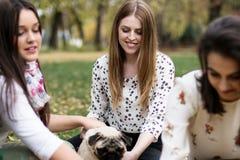 使用与哈巴狗狗的小组相当少妇在公园 库存图片