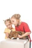 使用与在一个空白背景的复活节兔子的二个小女孩 库存图片