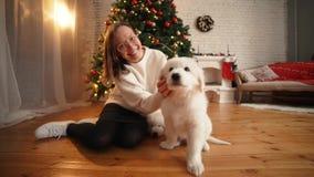 使用与在圣诞树和壁炉背景的愉快的小狗的女孩  股票录像