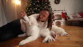 使用与在圣诞树和壁炉背景的愉快的小狗的女孩  股票视频