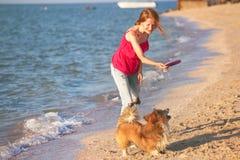 使用与在海滩的一条狗的女孩 图库摄影