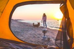 使用与在海滩的一条狗的女孩 免版税库存图片