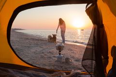 使用与在海滩的一条狗的女孩 库存图片