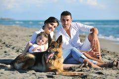 使用与在海滩的狗的愉快的系列 免版税图库摄影