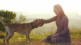 使用与在自然的狗的可爱的年轻女人在令人惊讶的日落期间