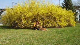 使用与在草坪的小狗狗的微笑的女孩 影视素材