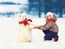 使用与在雪的白色萨莫耶特人狗的圣诞节愉快的少年男孩在冬天,快乐的狗给爪子孩子 免版税图库摄影