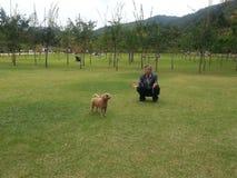 使用与在Naminara海岛里面的小狗的一个人 库存图片