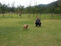 使用与在Naminara海岛里面的小狗的一个人 库存照片