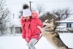 使用与在winte的一条西伯利亚爱斯基摩人品种狗的小女孩 库存图片