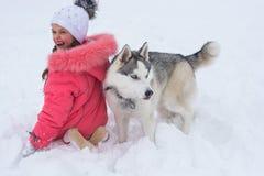 使用与在winte的一条西伯利亚爱斯基摩人品种狗的小女孩 免版税图库摄影