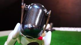 使用与塑料骨头的爱犬机器人 股票录像