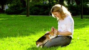 使用与她的小猎犬狗的女孩在公园 慢 股票录像