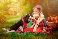 使用与她的狗和给他苹果的愉快的儿童女孩在晴朗的秋天庭院里 图库摄影