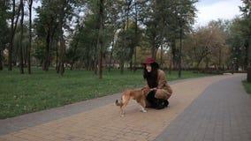 使用与她的狗的快乐的女孩在公园 股票视频