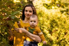 使用与婴孩的愉快的年轻母亲在有黄色枫叶的秋天公园 走户外在秋天的家庭 有h的小男孩 库存图片