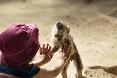 使用与小孩女孩的猴子 库存图片