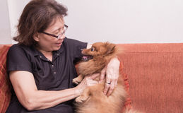 使用与小狗的美丽的妇女,当在家时说谎在沙发 库存照片