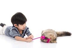 使用与平纹小猫的逗人喜爱的亚裔男孩 免版税图库摄影