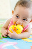 使用与强盗鸭子玩具的逗人喜爱的亚裔女婴 免版税库存照片