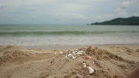 使用与沙子的妇女腿在异乎寻常的海滩和被弄脏的海洋背景 暑假概念 股票录像