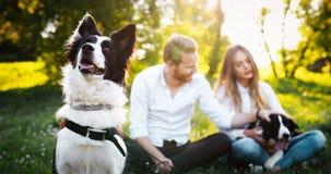 使用与狗的夫妇 免版税图库摄影
