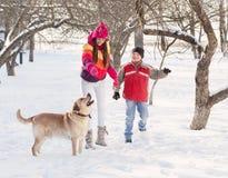 使用与狗的女孩和男孩 免版税库存照片