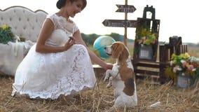 使用与狗的现代加工好的新娘的旁边特写镜头画象在葡萄酒构成的背景 影视素材