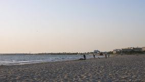 使用与狗的男孩少年在天际,当走在海海滩时 夏天活动 影视素材