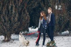 使用与狗的美好的夫妇 图库摄影