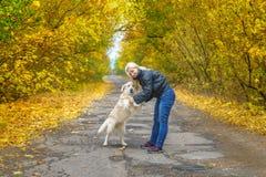 使用与狗金毛猎犬的女孩在秋天公园 图库摄影