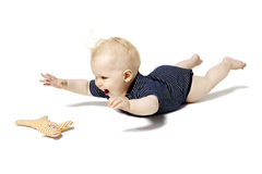 使用与猫玩具的婴孩 库存照片