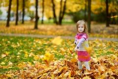使用与秋叶的可爱的小女孩 库存照片