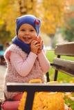 使用与秋叶的小女孩在公园 免版税图库摄影