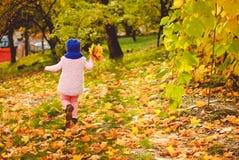 使用与秋叶的小女孩在公园 免版税库存图片