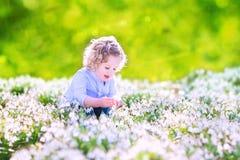 使用与第一朵春天花的愉快的女孩 库存图片