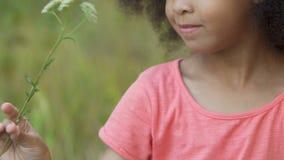使用与花绿色领域的小女孩,花费业余时间外面,自然 股票视频