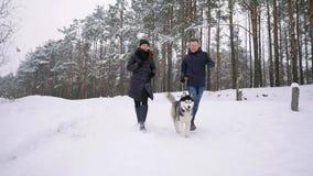 使用与逗人喜爱的多壳的小狗的愉快的现代夫妇画象的腰部户外在冬天,在微笑在的亚裔人的焦点 股票视频