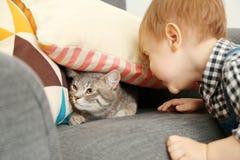 使用与逗人喜爱的猫的可爱的小男孩特写镜头在屋子里 免版税库存图片