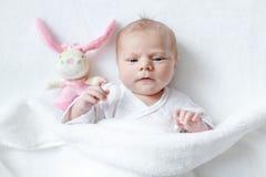 使用与长毛绒动物玩具的逗人喜爱的女婴 免版税图库摄影
