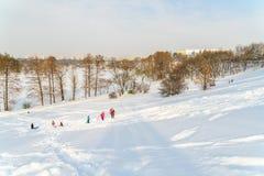 使用与雪的孩子在降雪以后在冬日在布加勒斯特Tineretului公园  免版税库存照片
