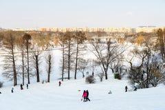 使用与雪的孩子在降雪以后在冬日在布加勒斯特Tineretului公园  库存照片