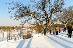 使用与雪的孩子在降雪以后在冬日在布加勒斯特Tineretului公园  图库摄影