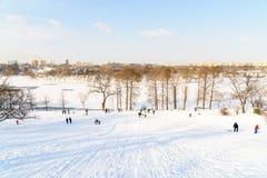 使用与雪的孩子在降雪以后在冬日在布加勒斯特Tineretului公园  库存图片