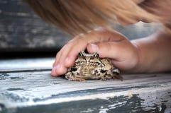 使用与青蛙蟾蜍的逗人喜爱的幼儿女孩 库存图片