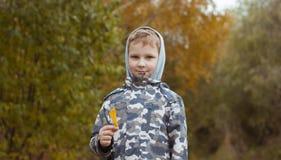 使用与黄色叶子的男孩 秋天在城市公园, 库存照片