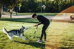 使用与滑稽的多壳的狗的美丽的少妇户外在公园 图库摄影